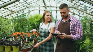 Is your data management ready for the Dutch Flower Trials?