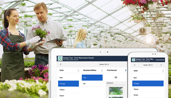 Registration software breeding