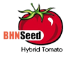 BHN Seed